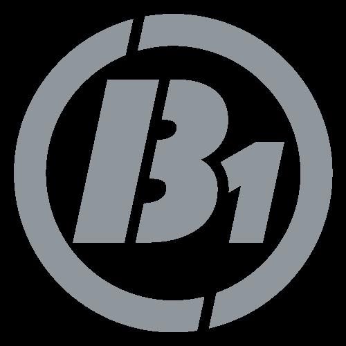 B-Eins OHG
